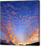 Manoa Valley Sunrise Canvas Print