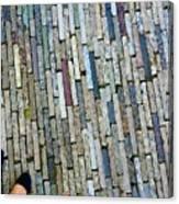 Many Layered Path Canvas Print