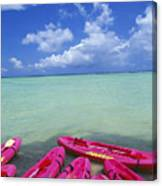 Many Pink Kayaks Canvas Print