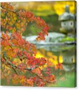 Maple Colors Canvas Print