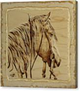 Maple Horse Canvas Print