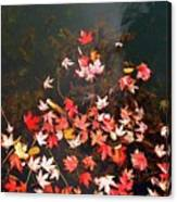 Maple Leaves On The Water  Canvas Print