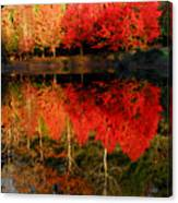 Maple Tree Mirror Canvas Print