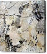 Marble Tan Black Canvas Print