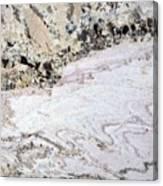 Marble Black Tan Pink Canvas Print