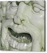 Marble Head Canvas Print