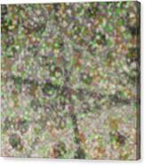 Marble Slab 6-23-2015 - 1 Canvas Print
