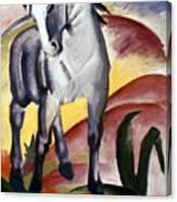Marc: Grey Horse, 1911 Canvas Print