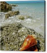 Marco Island South Beach Canvas Print