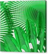 Margaritas Verdes Canvas Print