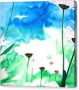 Margeriten Canvas Print