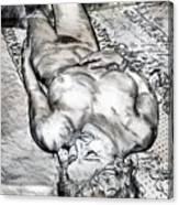 Nude Maria On Animal Sheets Canvas Print