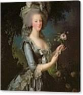 Marie Antoinette Canvas Print