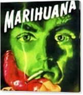 Marihuana Canvas Print
