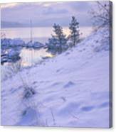 Marina And Snow Canvas Print