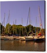 Marina At Lake Murray S C Canvas Print