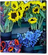 Market Fresh In Watercolor Canvas Print