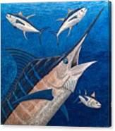 Marlin And Ahi Canvas Print