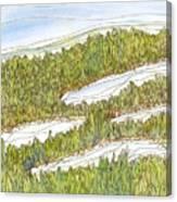 Marsh 8 Canvas Print