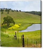 Marsh Creek Road Canvas Print