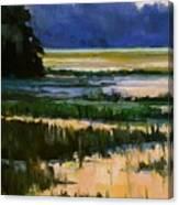 Marsh Jazz Canvas Print