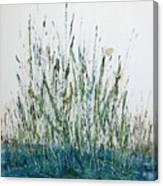 Marsh Life II Canvas Print
