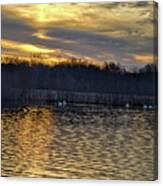 Marsh Ripple Pond Canvas Print