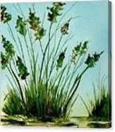 Marsh Weeds Canvas Print