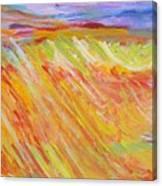Marshlands Canvas Print