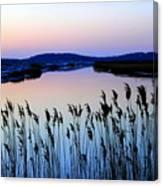 Marshy Twilight Canvas Print