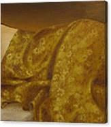 Mary Magdalene-the Dream Canvas Print
