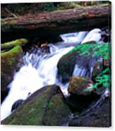 Mason Creek  Canvas Print