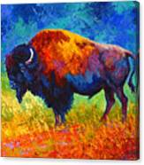 Master Of His Herd Canvas Print