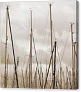 Masts In Sepia Canvas Print