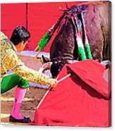 Matador On Knees Canvas Print
