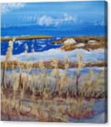 Matagorda Island Texas Canvas Print
