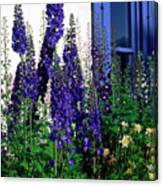Matching Flowers And  Window Canvas Print