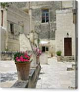 Matera With Flowers Canvas Print