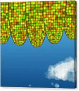 Math Corn Canvas Print