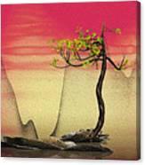 Math Pine 2 Canvas Print