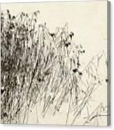 Matsuo Basho Remembering Canvas Print