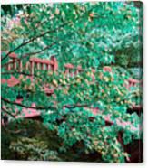 Matthiessen State Park Bridge False Color Infrared No 1 Canvas Print