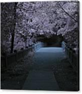 Matthiessen State Park Bridge False Color Infrared No 2 Canvas Print