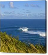 Maui, Jaws Landscape Canvas Print