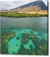 Maui Landscape Canvas Print