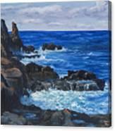 Maui Rugged Coastline Canvas Print