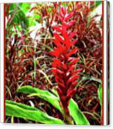 Maui Tropical Floral Canvas Print
