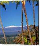 Mauna Kea  Canvas Print