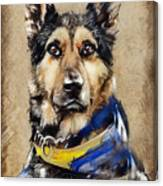 Max The Military Dog Canvas Print
