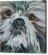 Max Up Close And Personal Canvas Print